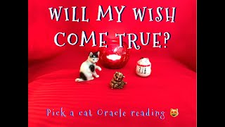 WILL YOUR WISH COME TRUE? - ORACLE READING - PICK A CARD (CAT) 😻