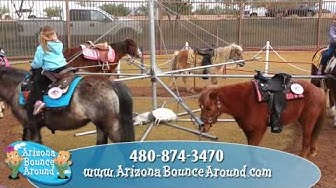 Pony Rides, Pony Party, Party Ponies, Phoenix AZ, Arizona
