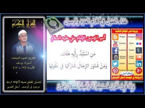 تحميل المصحف كامل بصوت الشيخ محمود الشحات انور mp3
