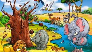 Какие животные водятся в Африке? Киндер Зу