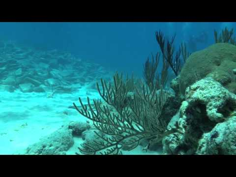 Montana Nola Constellation Dive June 9, 2014 Bermuda with Blue Water Divers