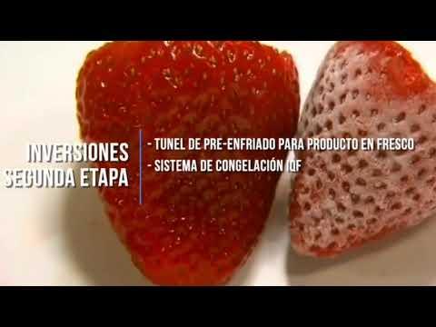 En Aguascalientes, FUMEC apoya a empresas de agroalimentos