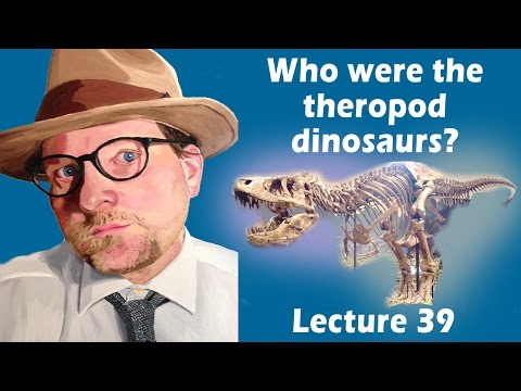 Who were the theropod dinosaurs?