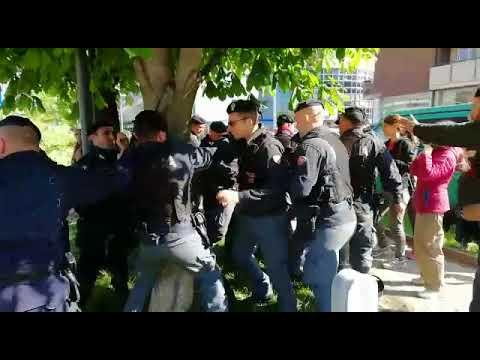 Proteste a Rovereto per salvare gli alberi