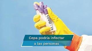 Los Centros para el Control y Prevención de Enfermedades, reportaron que para el 5 de septiembre se esperan al menos 188 mil 982 decesos en el país por Covid-19