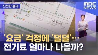 [신선한 경제] '요금' 걱정에 '덜덜'…전기료 얼마나…