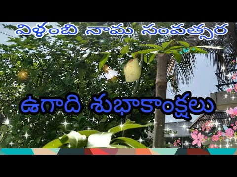 Ugadi wishes to our viewers and subscribers || STV@SUPRAJA TELUGU VIDEOS