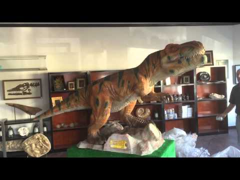Prehistoric, Lincoln City, Oregon