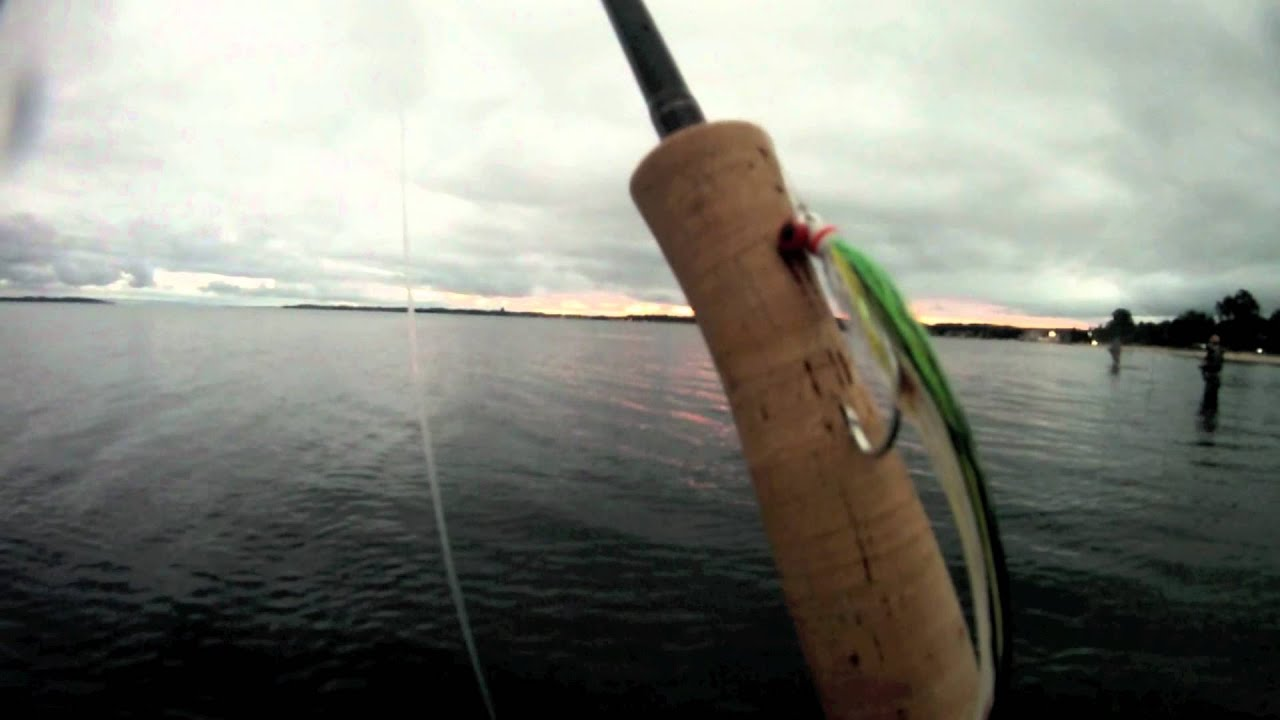 Surf fishing northern michigan salmon youtube for Michigan out of state fishing license