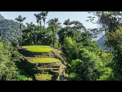 Lost City of the Monkey God Discovered Deep in the Honduran Jungle