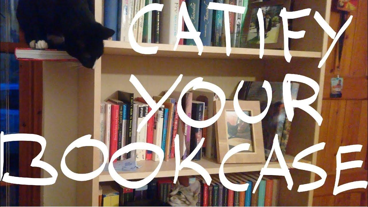 catification wall shelves