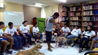 Palestra sobre cuidados e comportamento canino