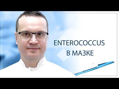 Enterococcus в мазке