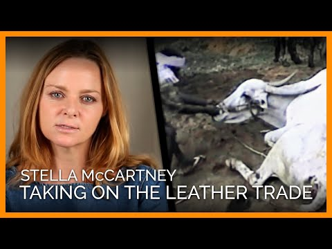 Stella McCartney Takes On the Leather Trade