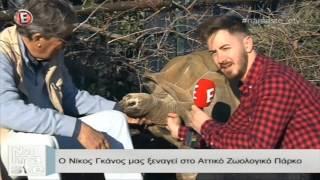 Ο Νίκος Γκάνος μας ξεναγεί στο Αττικό Ζωολογικό Πάρκο -