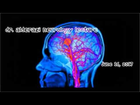 Neurology Overview