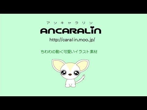 ちわわチワワの動く可愛いイラスト素材 Ancaralinアンキャラリン