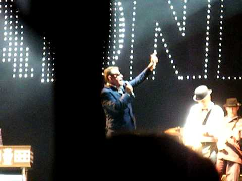 Download Madness 2010 at Newmarket RACES 1