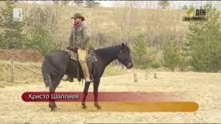 Chris Shalliev | Natural Horsemanship | BNT Documentation | Horsenook