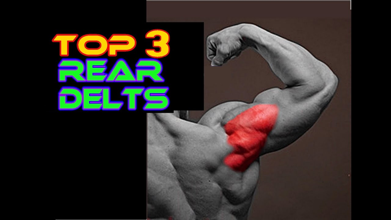 Top 3 Rear Delts Bodyweight exercises - YouTube