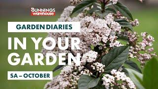 Gardening in October | South Australia | Bunnings Garden Diary