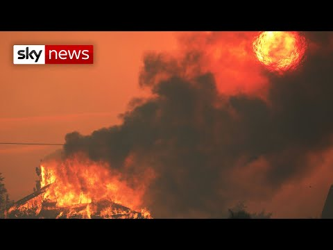 Thousands have 'died prematurely' in US due to wildfire pollution