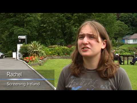 Screening Ireland, Ireland in film and television summer school at the University of Limerick