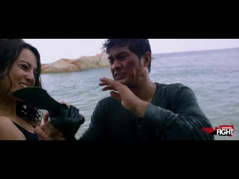 Channel Fight's Best New Martial Arts & Fight Movies of 2017