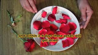 HOW TO DRY ROSE PETALS AT HOME (WITH ENGLIISH SUBTITLES)