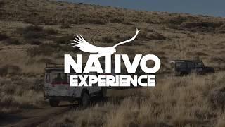 Nativo Experience - Zona Patagonia