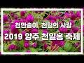 해외 음란 사이트 적발…단속에도 유사 사이트 생겨 / KBS뉴스(News)