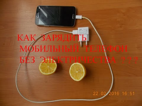 Лимон - полезные свойства и калорийность, применение и
