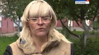 в Костромской области открытость и законность выборов будут обеспечивать наблюдатели