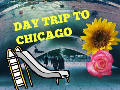 BIRD POOPED ON US | Chicago Travel Diary |
