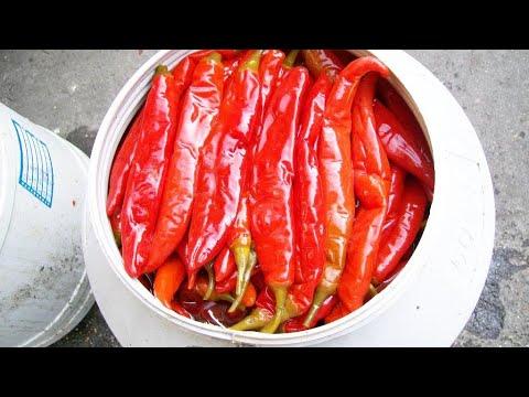 川菜中的泡椒醬,怎麼才能做到色香味美?看廚子的詳細製作【廚子說菜】