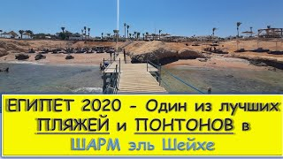 ЕГИПЕТ МОРЕ 2020 ПЛЯЖ и РИФ отеля Otium Family Amphoras Beach Resort пляж SHORES AMPHORAS Шарм