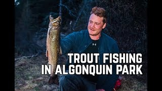 Pt. 1 Algonquin Park Spring Brook Trout Fishing Trip With Ted Baird & Shawn James