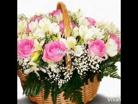 Самые красивые картинки про цветы 👍👍👍👍