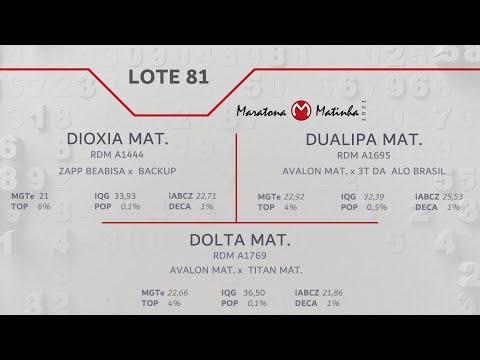LOTE 81 Maratona Matinha