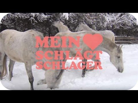 Nik P. - Auf weißen Pferden (Schlager TV Video)