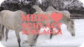 Nik P. - Auf weißen Pferden (Schlager TV Video) Mp3