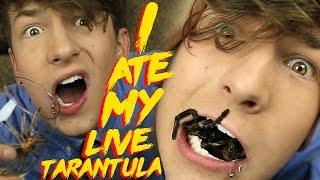 Eating A Live Tarantula!
