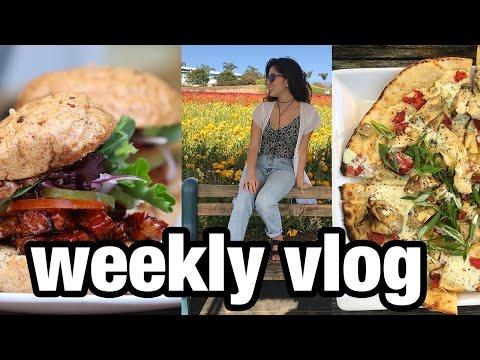Weekend in Flower Fields +  Doctor Visit   Weekly Vlog