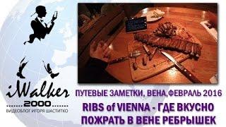 видео Вена в феврале