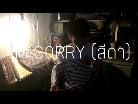 The Rube - I'M SORRY (สีดา) ดนตรีไทย COVER