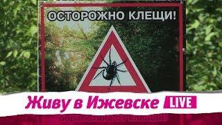 Живу в Ижевске 28.06.2018
