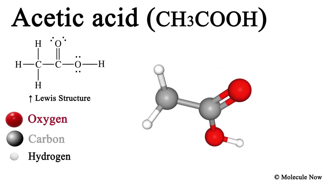 Acetic Acid Ch3cooh 3d Model With Lewis Structure Youtube