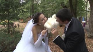 Свадьба Роман и Ольга