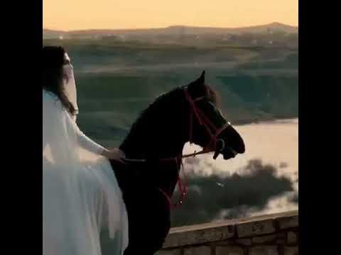 Miran & Reyhan _ Hercai özel Klip