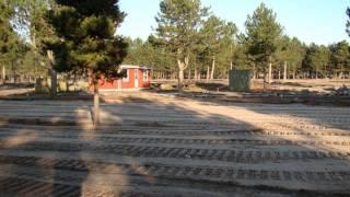 Feddet camping (sandet) 2
